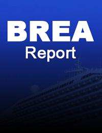 BREA-report-img